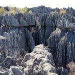 Parc national de Tsingy de Bemaraha